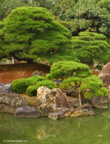 The ornamental gardens of Ninomaru Palace