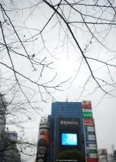 A gloomy day in Shibuya